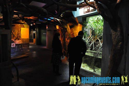 Photo from Hot Chocolate @ The Adventure Aquarium